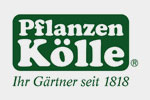 Pflanzen Kölle Black Friday