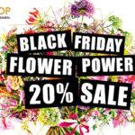 Black Friday Flower Power! 20% Exklusivrabatt für Premium-Blumen von Fleurop