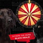 Jetzt Glücksrad drehen und tolle Black Weekend Deals bei Tackenberg einlösen